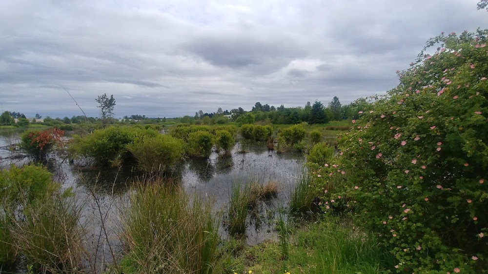 Fairview Wetlands Scenic Trail